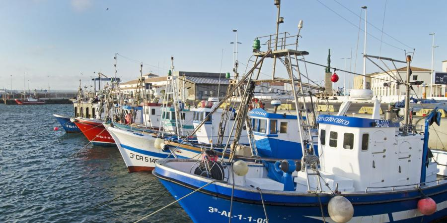 Vaixell de pesca