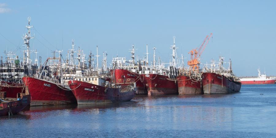 Flota de pesca