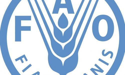 Logotip FAO