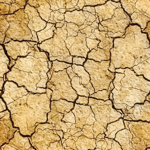 terra seca