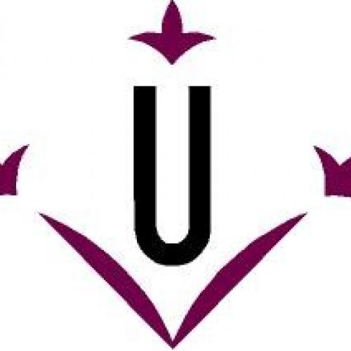 Logo Universitat de Lleida